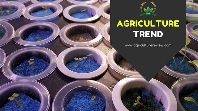 These top AGRICULTURE TREND can change the way you think!