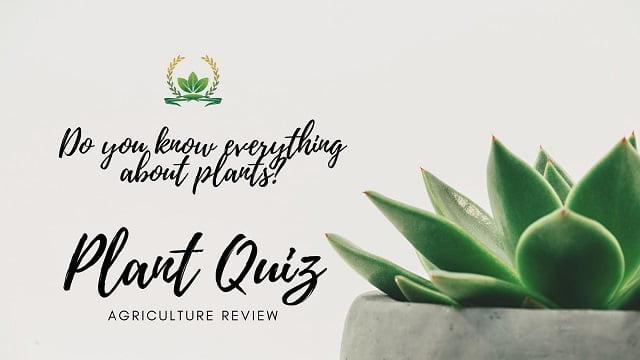 PLANT QUIZ: Know your Plant Quiz Score!