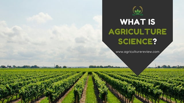 What Is Agriculture Science? Read or Miss About Agriculture Science
