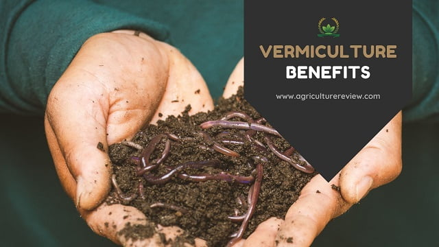 vermiculture benefits